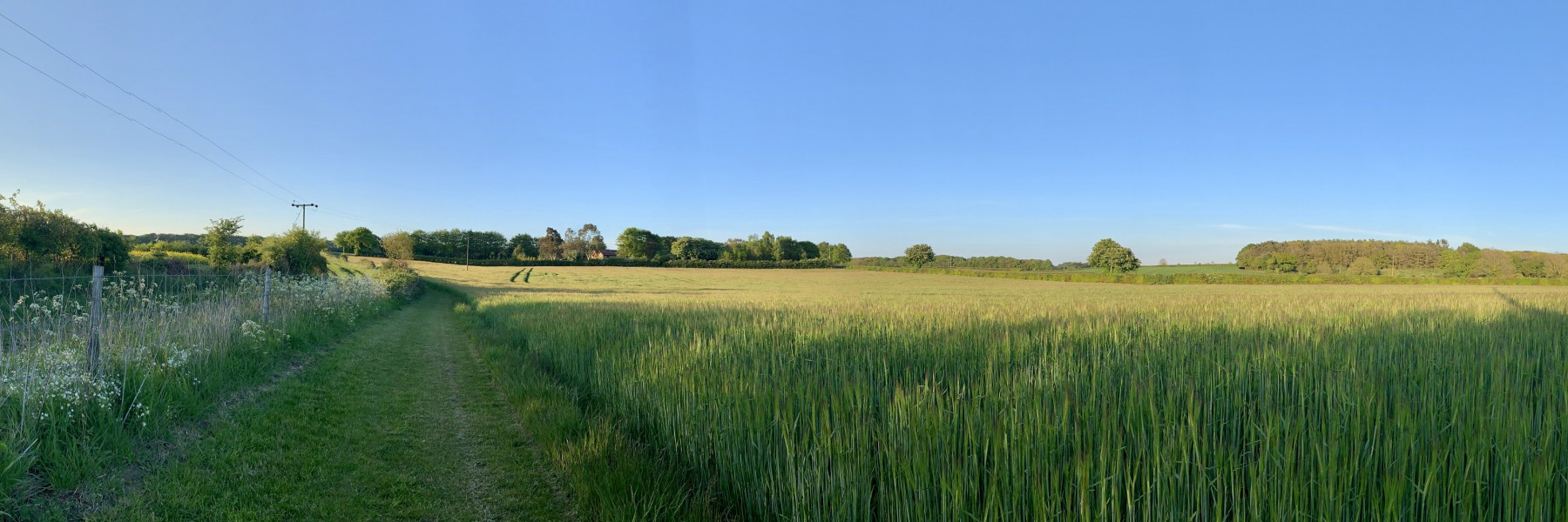 Panoramic view of the North Norfolk countryside from Wood Farm