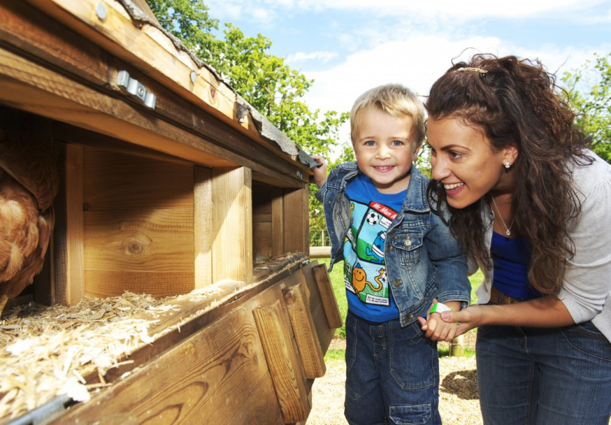 Toddler-friendly holiday fun at Wroxham Barns near Wood Farm Cottages