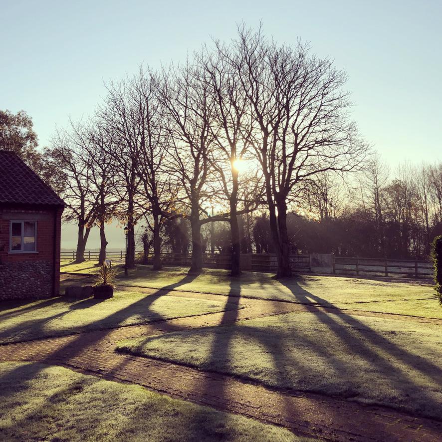 Winter breaks near Holt in Norfolk